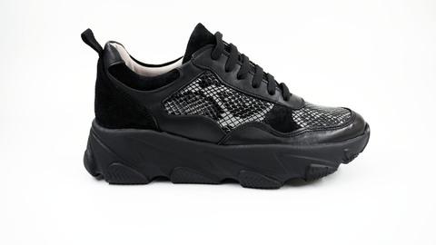 Pantofi dama RP1606_1